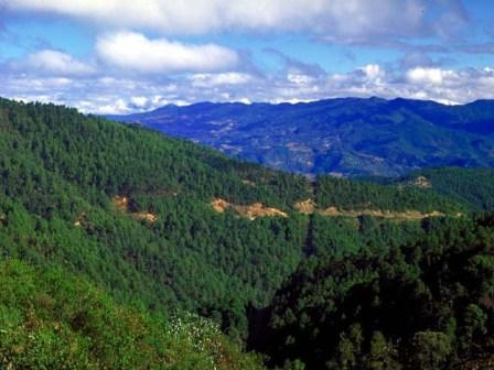 VII.- El camino que va al pueblo de mi padre llega ahí después de atravesar la sierra